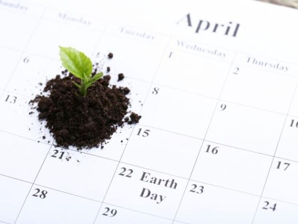 Sowing & Planting Calendars