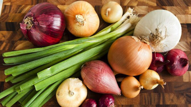Which Onion Variety to Grow