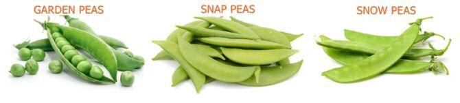 Pea Types