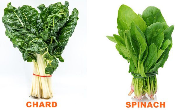 Differences Between Chard and Spinach
