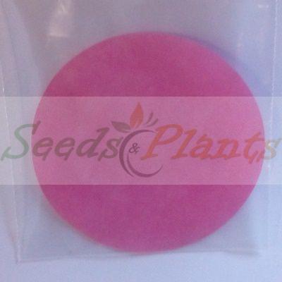 Smoke Seed Primer Disc